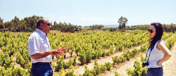 http://www.winemag.com/gallery/tasting-the-native-wines-of-sardinia/